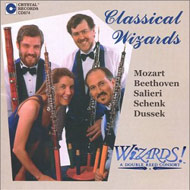 Cover cd WiZARDS! 15kB